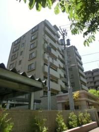ダイアパレス円山領事館通 603