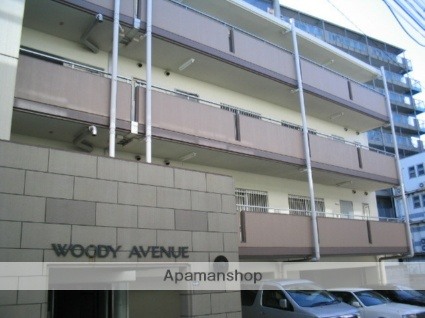 WOODYAVENUE[401号室]の外観