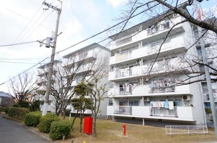 平田住宅9棟[506号室]の外観