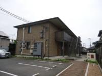 光2011