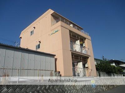 新着賃貸13:愛媛県松山市桑原4丁目の新着賃貸物件