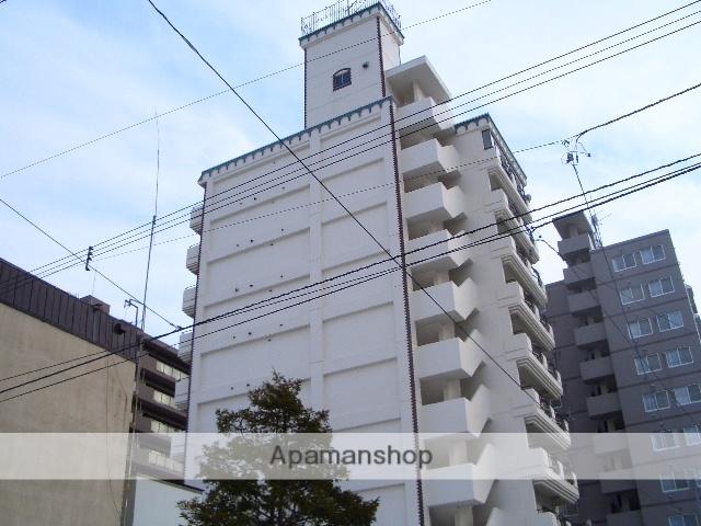 北海道札幌市中央区、幌平橋駅徒歩10分の築30年 10階建の賃貸マンション