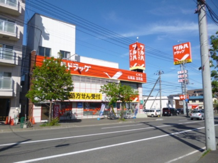 円山ホワイトハイツ[1LDK/29.33m2]の周辺8
