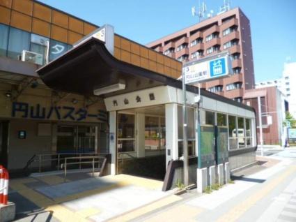 円山ホワイトハイツ[1LDK/29.33m2]の周辺1