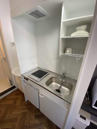 SAKURA239[1K/16.8m2]のキッチン