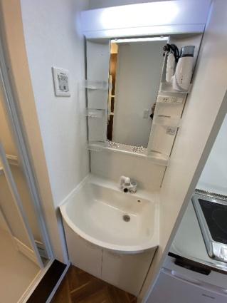 SAKURA239[1K/16.8m2]の洗面所