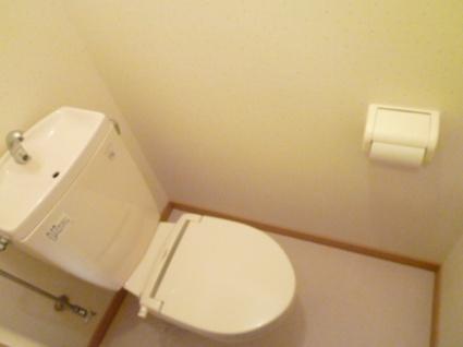 グランデス[1K/28m2]のトイレ