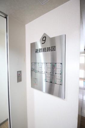 STRIPE札幌[1R/15.75m2]の共用部4
