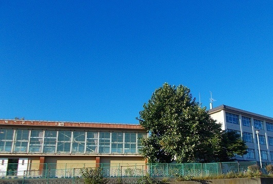 東山小学校 500m