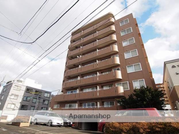 北海道札幌市豊平区、中島公園駅徒歩11分の築19年 9階建の賃貸マンション