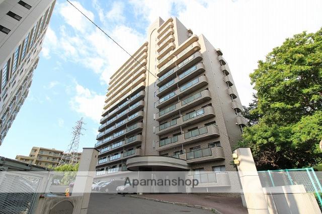北海道札幌市豊平区、南平岸駅徒歩12分の築21年 14階建の賃貸マンション