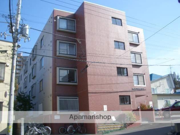 北海道札幌市南区、南平岸駅徒歩16分の築19年 4階建の賃貸マンション