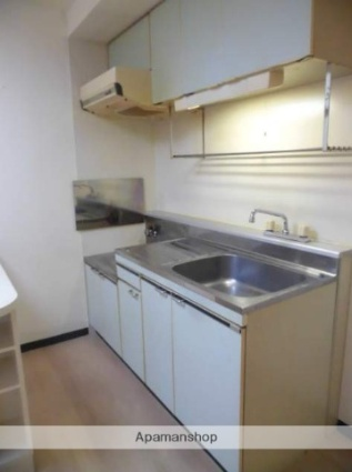 北海道札幌市中央区南六条西8丁目[1DK/29.5m2]のキッチン