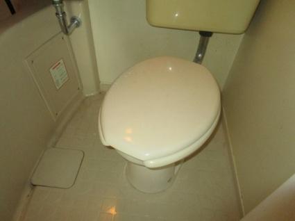 ハイツパイントリー[1DK/25.6m2]のトイレ