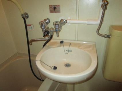 ハイツパイントリー[1DK/25.6m2]の洗面所