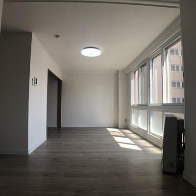 パレスマンション[1LDK/38m2]の内装4
