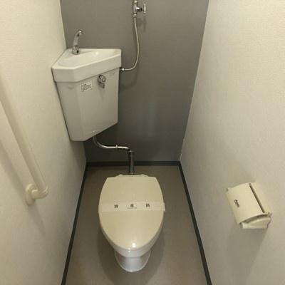 パレスマンション[1LDK/38m2]のトイレ