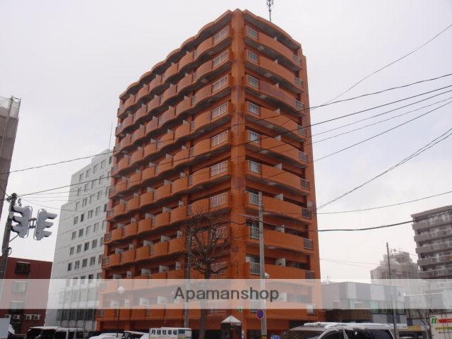 北海道札幌市白石区、バスセンター前駅徒歩13分の築29年 11階建の賃貸マンション