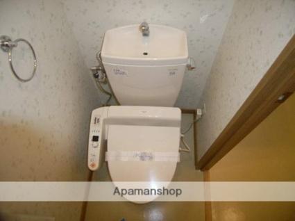 MAMAISON[1LDK/43.2m2]のトイレ