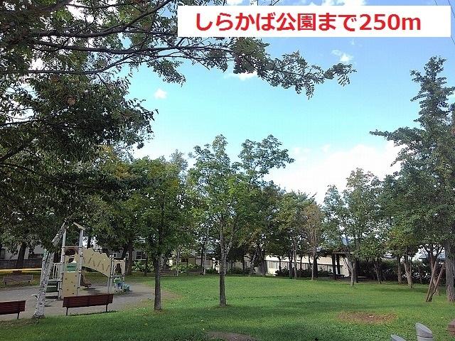 しらかば公園 250m
