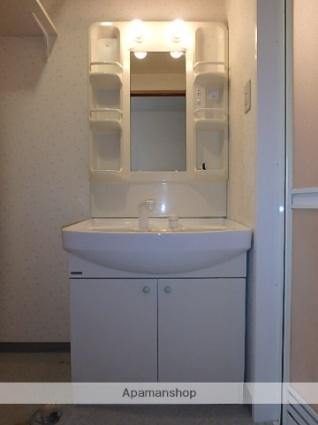 ブリックコート・Ⅰ[1LDK/50.28m2]の洗面所
