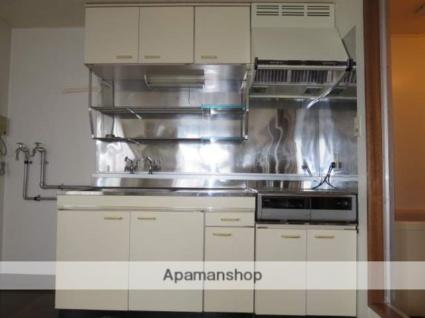 Tsumotoクリーンハイツ[1DK/40.25m2]のキッチン