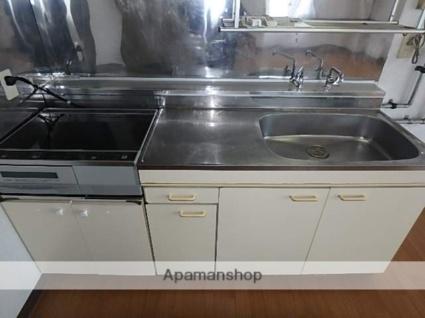 Tsumotoクリーンハイツ[1DK/43.15m2]のキッチン2