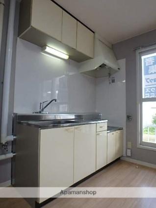 ニューコスモハイツ[2DK/46.2m2]のキッチン