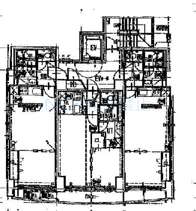 コーラル[1LDK/37.52m2]の配置図