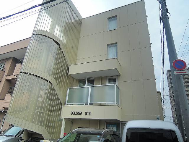 BELUGAS13
