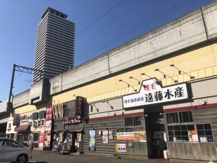 北海道札幌市西区八軒一条東1丁目[3LDK/71.35m2]の周辺8