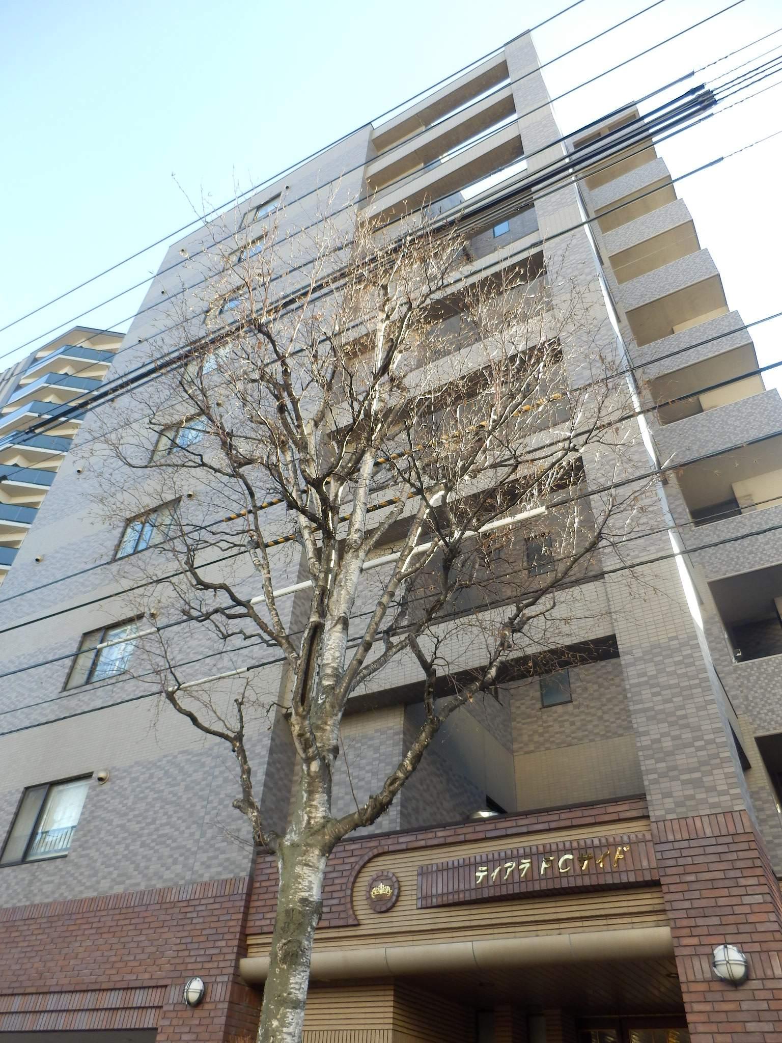 北海道札幌市中央区、バスセンター前駅徒歩6分の築14年 9階建の賃貸マンション