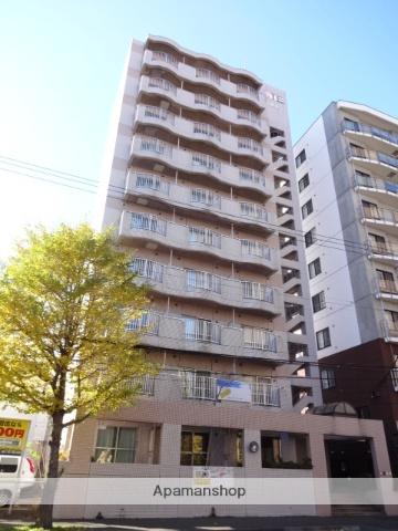 北海道札幌市中央区、西18丁目駅徒歩4分の築30年 10階建の賃貸マンション
