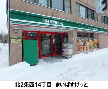 北海道札幌市中央区北二条西14丁目[1LDK/39.87m2]の周辺2