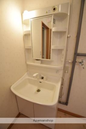 サンクライス[2LDK/63.18m2]の洗面所