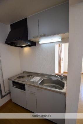 サンクライス[2LDK/63.18m2]のキッチン