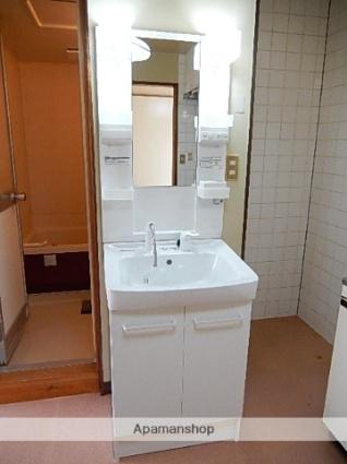 コーポサイトウ[2LDK/45.38m2]の洗面所
