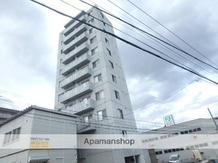 北海道札幌市豊平区、南平岸駅徒歩11分の築11年 10階建の賃貸マンション