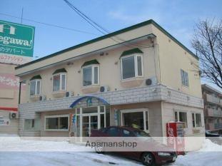 北海道札幌市豊平区、南平岸駅徒歩27分の築21年 2階建の賃貸アパート