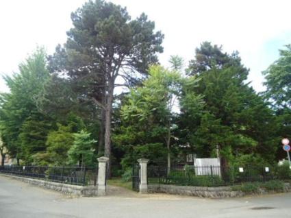 フォーシーズンズ植物園[1LDK/37.4m2]の周辺4