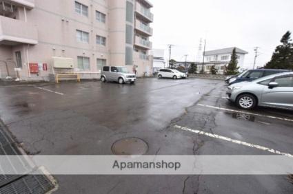メゾンクレール富士見[2LDK/55.04m2]の駐車場