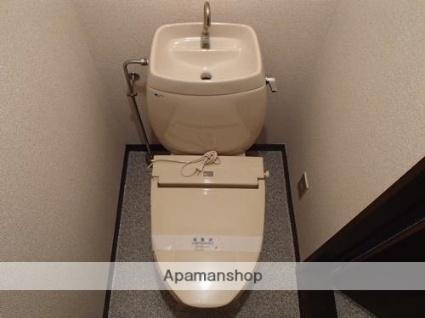 メゾンカレッジ[1K/24.84m2]のトイレ