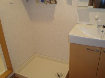 サン・フォレスト[2LDK/56.2m2]の洗面所