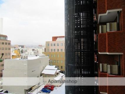 岩手県盛岡市開運橋通[1K/29m2]の眺望