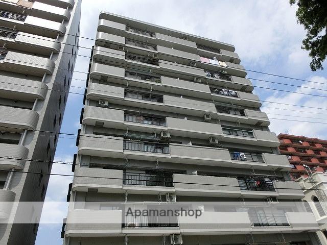 岩手県盛岡市、盛岡駅徒歩10分の築20年 11階建の賃貸マンション