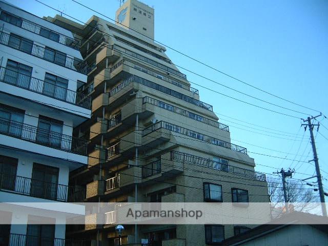 岩手県盛岡市、盛岡駅徒歩7分の築33年 11階建の賃貸マンション