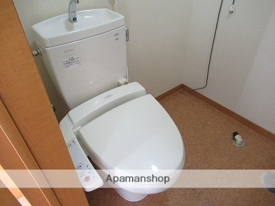 岩手県盛岡市城西町[1R/24.75m2]のトイレ