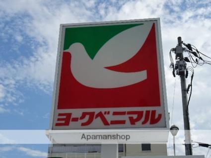 サンヴァーリオ新田駅前Ⅴ[1K/25.96m2]の周辺1