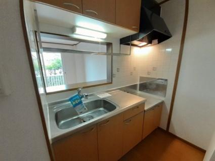 グラシュー折立[2LDK/56.83m2]のキッチン