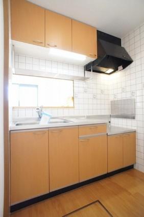 エクセレント・川田[2LDK/58.58m2]のキッチン